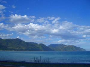 Küste der Süddinsel auf Neuseeland