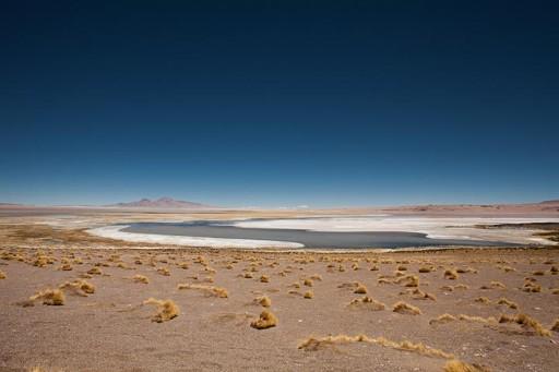 Chile Salar de Tara